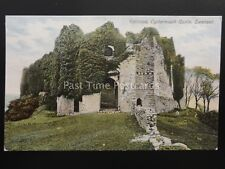 South Wales SWANSEA Entrance to OYSTERMOUTH CASTLE c1906 by Woodbury Series 2791