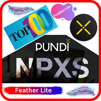 20,000 Pundi-X (NPXS) CRYPTO MINING-CONTRACT (20,000 NPXS) - Crypto Currency