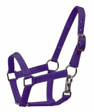 PURPLE PONY Size Western Nylon Halter w/ Nickel Plated Hardware! NEW HORSE TACK!