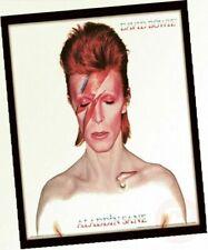 "David Bowie Aladdin Sane 12"" Album Cover Framed Print Wood Multi-colour 32 X"