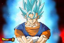 Dragon Ball Super Poster Vegito Blue Potara Fusion 12in x 18in Free Shipping