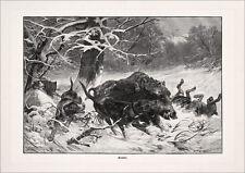 Immagine caccia sauhatz cinghiale caccia cani di Deiker fac simili 520 su carta cartoni