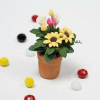 Sunflowers in Clay Pot Plant For 1:12 Miniature Dollhouse Kitchen Decor