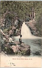Early 1900s Two Boys Cane Pole Fishing at Beaver Brook Falls, Keene, NH postcard