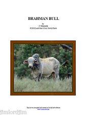 BRAHMAN BULL - cross stitch chart