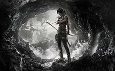 "12 Tomb Raider 9 - 2013 Video Game Art 38""x24"" Poster"