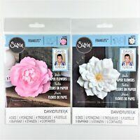 Sizzix Framelits Dies By Stephanie Barnard  Card W//Flowers /& Circ 630454245346