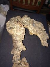 Large Heavy Burl Wood Speciman