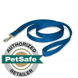 """PetSafe Nylon Leash 6'  (3 Widths to Choose From 1"""", 3/4"""" or 3/8"""") Royal"""