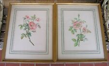 LISTED Artist Vittorio Guidotti (C.1930s) Wild Roses Watercolors-Set of 2