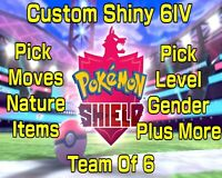 Pokemon Sword and Shield CUSTOM TEAM OF 6 SHINY PERFECT IV EV Fast Delivery