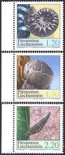 Liechtenstein 2004 Ammonite/Sea Urchin/Shark's Tooth/Fossils/Nature 3v (n42331)