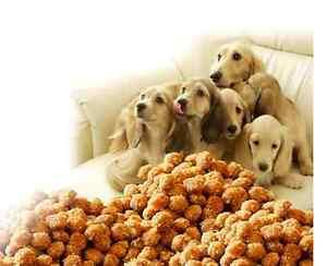 IMPERIAL FOOD Energy Plus 20kg Hundefutter Adult Top QualitätTop Preis 2,80€kg