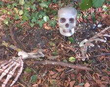 Bone Chilling Garden Stake Skeleton Halloween Horror Prop