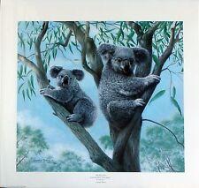 "Charles Fracé ""Ambassadors"" Koalas  LTD ED  S/N  619/3000  original folder & COA"