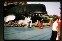 1961 Disneyland, Monstro the Whale, Original Slide c17b