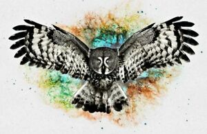Funny Gifts Home Wall Decor Owl Abstract Oil Painting Picture Printed on canvas