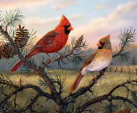 Cardinal on the branch Oil painting printed Art Printed on canvas L2716