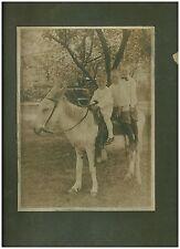 Vintage B&W Photo 3 Boys on a Donkey circa early 1900s