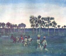 BRAZIL. Palm trees at Pirapora, Brazil 1908 old antique vintage print picture