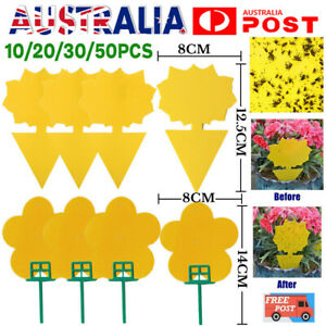 10/20/30/50PC Dual Sided Sticky Trap Insect Killer Whitefly Thrip Fruit Fly Gnat