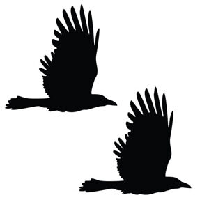 Qty 2 Bird Raven Stickers, Anti Bird Strike Window Decal Pack EE Any Colour
