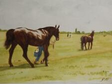 old PAINTING watercolour RACE HORSE signed