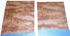 "Waterfall Bubinga wood veneer 5"" x 7"" raw no backing ""Aa"" grade 1/42"" thick"