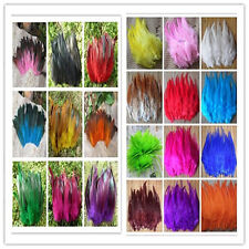 Free shipping 50PCS/Lot Beautiful Rooster Tail Feathers 4-6inches/10-15cm