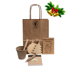 Eco Friendly Christmas Party Bags, Plastic-free, pre-filled by Healthy Family
