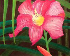 """""""DAYLILY"""", Colored pencil on paper, 11"""" x 14"""", 2017, Hemerocallis, Lily, Lilium"""