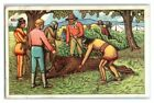 Winnetou & Apache Chief examine Dead Bear, Echte Wagner German Trade Card *VT31Q