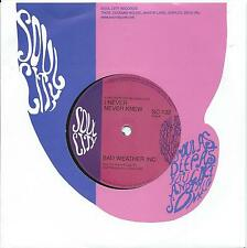 Bad Weather IncI never never knew/You really got a hold..:Northern Soul Re-issue