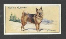 1936 Uk Dog Art Full Body Portrait Ogden Cigarette Trade Card Norwegian Elkhound