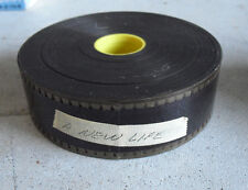 RARE Movie Theater 35mm Movie Trailer Film - A New Life