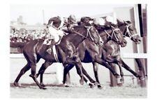 Flemington races Hotham Hcp Triple Dead Heat 1956 modern Digital Photo Postcard
