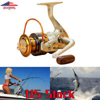 Interchangeable 12BB Ball Bearing Saltwater/ Freshwater Fishing Spinning Reel US