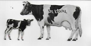 DeLaval Cream Separators Advertising Tin Lithograph Holstein Cow & Calf