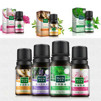 10ml Pure Natural Aromatherapy Essential Oil Fragrance Massage Aroma Therapeutic