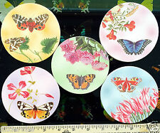 BUTTERFLY/BUTTERFLIES/Insects COASTERS For HOME L@@K!