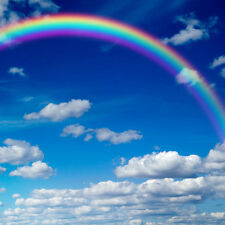 8x8FT Rainbow Sky Cloud Vinyl Photography Backdrop Background Studio Props ZR60