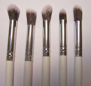 5 Soft Makeup Cosmetic Brushes for Eye Shadow, Powder, Eye Brows ~ Beauty Tools