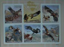 African birds of prey eagle harrier Guinea-Bissau 2009 Mi 4414-18 Gb9501a Imperf