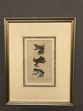 "Antique 1834 Hand Colored Frog Engraving G. Henderson Old Bailey 15"" X 12"""
