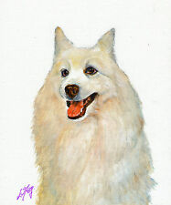 New Original Oil Art Japanese Spitz Portrait Painting Dog Artist Signed Artwork