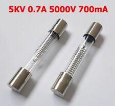 700mAh 0.7A Haute Tension 5KV Verre Fusible Micro-Onde Réparation 6mm x