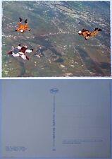 Cartolina PARA' FOLGORE - TECNICA A CADUTA LIBERA T.C.L. 2° TIPO - Anni '70/'80