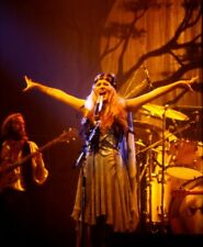 """8x10 (after matting) matted """"Stevie Nicks"""" concert photograph"""