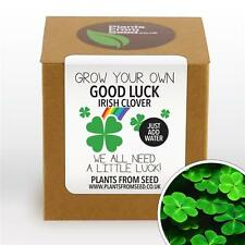Plants From Seed - Grow Your Own Lucky Clover Plant Kit