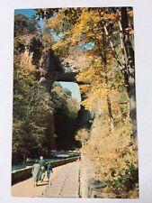 Natural Bridge of Virginia Natural Wonder of the World Chrome Postcard Unused